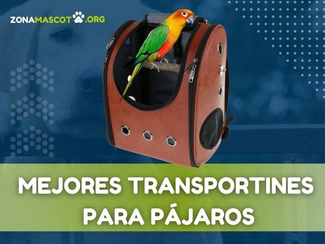 transportines para pájaros